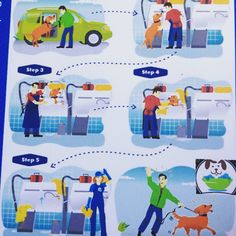 Bark bath self serve dog wash in costa mesa ca bark bath self self serve dog wash by barkbath see more this is how ez bark bath is solutioingenieria Choice Image