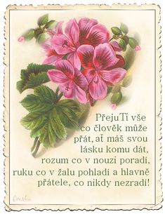 Narozeninové s říkankou - různé | Tvoření Happy Birthday Quotes, Garden Projects, Origami, Beautiful Pictures, Mojito, Album, Blog, Motocross, White Flowers