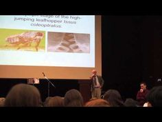 A Dialogue on Intelligent Design and Evolution - Michael Behe, PhD