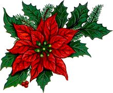 Stunning image - - from the clip art category animated Flowers gifs & images! Christmas Leaves, Christmas Tree Toy, Christmas Drawing, Christmas Flowers, Christmas Paintings, Christmas Clipart, Christmas Fabric, Christmas Printables, Christmas Wishes