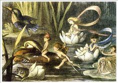 Beautiful A4 Glossy Fairies Print - 'Fairies And Water Lillies' - Richard Doyle 1870 by Richard Doyle http://www.amazon.co.uk/dp/B00ATIR0E2/ref=cm_sw_r_pi_dp_hdGsvb1778N5B