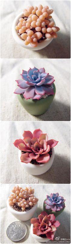 f79eca5d0a6772eb5980573db8d07615--polymer-clay-succulents-terarium.jpg (700×2397)