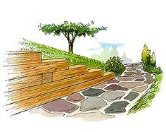 Timber Retaining Wall A pleasing decorative feature that's an asset to any yard, it's also a serious retaining wall that will stop an existing hill from sliding, or provide strong support for new landscaping.