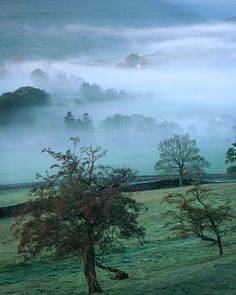 "agoodthinghappened:Littondale, Autumn Dawn by Ross J Brown on Flickr. bewitchingbritain: More of the soul-satisfying scenery of Yorkshire, considered to be among the greenest and most scenic areas in England and nicknamed ""Gods Own Country"". Yorkshire is a historic county of Northern England subdivided into North Yorkshire, South Yorkshire, West Yorkshire, and East Riding of Yorkshire; and it maintains its own distinct cultural heritage and well-deserved swag."