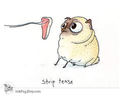 Strip Tease Pug Card - Funny Pug I Love you Card or Pug Love Note from a Pug Drawing + Watercolor Painting by InkPug!