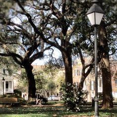 Pulaski Square - Savannah, GA