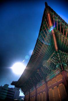 korea,Fall Light