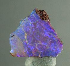 Opal ~ Queensland Australia