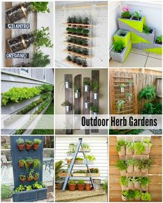 DIY 10 Outdoor Herb Garden Tutorials !