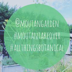 @moutangarden #instagram #takeover @selinalake