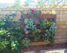 Vertical Succulent Garden Wall Mount By ProvincialGarden On Etsy