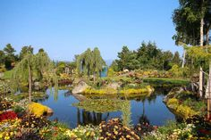 Flor og Fjære, a norvég csodakert