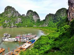 Halong Bay Cool Stuff, Travel, Trips, Viajes, Traveling, Outdoor Travel, Tourism