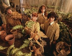 Harry Potter, Ron Weasley and Hermione Granger. Herbology at Hogwarts. Harry Potter World, Mundo Harry Potter, Harry Potter Films, Harry Potter Love, Harry Potter Universal, Harry Potter Fandom, Harry Potter Plants, Harry Potter Mandrake, Harry Potter Pictures