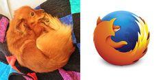 10. El pequeño Firefox