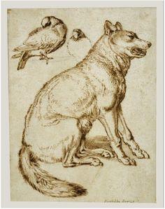 Lobo y Dos Palomas. Sinibaldo Scorza. 1610-1620. J. Paul Getty Museum, Estados Unidos.