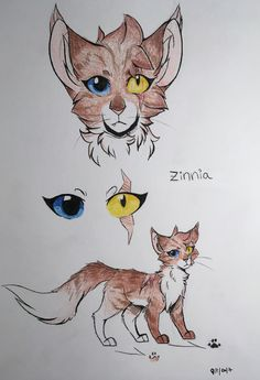 I brought back my old OC Tiger, I changed her design a bit and renamed her Zinnia// she is floofy// ☆Øtakucat☆ Creature Drawings, Animal Drawings, Cute Drawings, Cat Character, Character Design, Cat Drawing Tutorial, Cat Oc, Chibi Cat, Warrior Cats Art