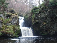 Linn Falls, behind the town of Aberlour in Speyside - a lovely woodland walk Summer Bucket Lists, Scotland Travel, Beautiful Places To Visit, All Over The World, Trip Planning, Woodland, Places To Go, England, Waterfalls