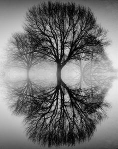 ansel adams symmetry photography - Google Search SYMMETRY