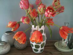 Meine Tulpen zu Hause!