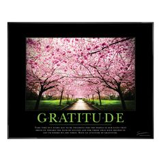 Gratitude Cherry Blossoms Motivational Poster - All Posters & Art