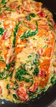 This Salmon in Roasted Pepper Sauce makes an absolutely scrumptious meal, worthy of a special occasion Make this easy onepan dinner in just 20 minutes! salmon dinner creamy keto spinach lowcar is part of Roasted pepper sauce - Fish Dishes, Seafood Dishes, Seafood Recipes, Gourmet Recipes, New Recipes, Cooking Recipes, Healthy Recipes, Main Dishes, Fish Recipes Diet