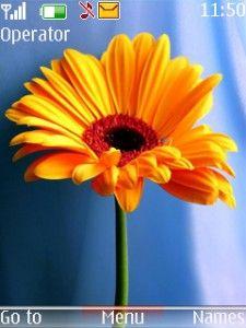yellow flower1 2700 classic,2720 Fold ,2730 Classic ,3600 Slide ,3600 Slide ,3610 Fold ,3720 Classic ,5000 ,5130 Xpress Music ,5132 XpressMusic ,5220 Xpress Music ,5300 ,5310 Xpress Music ,5330 Xpress Music ,5610 Xpress Music ,6233 ,6234, 6267 , 6270 , 6275 , 6280 ,6282 , 6300 ,6300i ,6301,6303,6303i,6500 Classic ,6500 Slide ,6555,6600 Fold ,6600i Slide ,6700 Classic,.