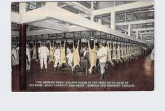 ANTIQUE POSTCARD ILLINOIS CHICAGO ARMOUR AND COMPANY SHEEP KILLING FLOOR IS MOST  | eBay