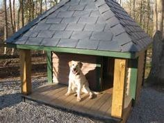 images of dog house