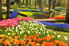 Flower Gardens | Gardening Tips | Garden Guides