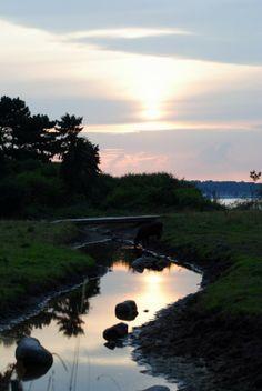 Slettemose i Nakke ved Rørvig Danish, Denmark, Homes, Beach, Water, Holiday, Outdoor, Collection, Viajes