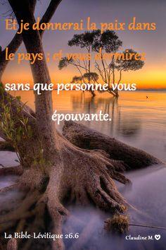 Encourageantes promesses de Dieu, si son peuple marche en obéissant à ses statuts.... *  *  * Paisible nuit à tous et à demain  :-) ♥  ♥  ♥  Claudine Michau - Google+