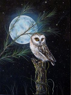 """""""Little Northern Saw Whet Owl under the Moon"""" original acrylic painting by artist Jessie Fries"""