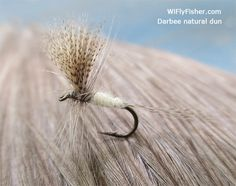Fly patterns and fly fishing tactics for catching trout