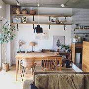 Kitchen,TRUCK,りんご箱,リノベーション,猫と暮らす。,猫とインテリアに関連する他の写真