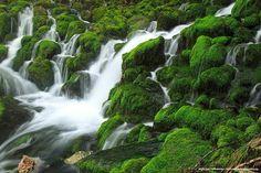 * * Agua sobre verde en Agurain - Salvatierra - Alava - Euskadi - Basque Country #euskadi #basquecountry #Alava #monte
