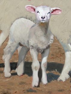 'Spring Lamb'  by John Reynolds