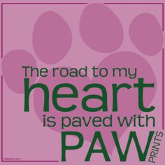 The road to my Heart is paved with Paw Prints <3