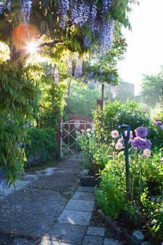 Trädgårdsinspiration från kolonilotten