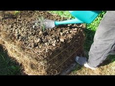 How to make a straw bale garden bed.. Our 1st Lucerne/alfalfa bed.. - YouTube
