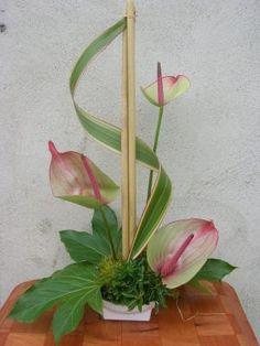 Blog de orchidee35 - Page 125