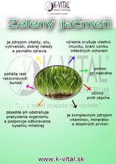 zeleny jačmen Glycemic Index, Nordic Interior, Weight Loss Smoothies, Planer, Meal Planning, Health Tips, Food And Drink, Facebook, Healthy Lifestyle Tips
