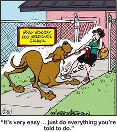 Marmaduke - haha- daisy got kicked out of dog training class