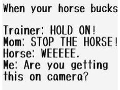"""YES, EXACTLY!!!!!! My horse bucked when I was on him only one time when I was riding, my parents and brothers saw me, so I was like """"did u video tap me????"""" and there reply """"No"""" I wished they did though, I wanted to know what I looked like getting bucked"""
