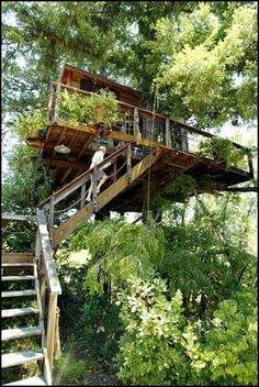 """Andrew Fisher wanted his Napa Valley treehouse to """"fade right into the trees,"""" he says. He hired a professional arborist, who spent four months working on the pinetop hideaway. Luxury Tree Houses, Cool Tree Houses, Fairy Houses, Play Houses, Treehouse Living, Tree Tops, To Infinity And Beyond, In The Tree, Green Life"""