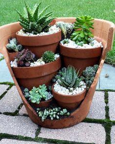 Write #cacticacti under your cactus photos ===>we will check your photo for repost in this page  █▓█▓█▓█▓█▓█▓█▓█▓█▓█▓█▓█▓█▓█▓█▓█▓█▓█ . .   From www.pintrest.com █▓█▓█▓█▓█▓█▓█▓█▓█▓█▓█▓█▓█▓█▓█▓█▓#suculenta #cactus #cacti  #succulentgarden #succulents  #ساکولنت  #kaktüs #кактус  #kactus  #sukulent  #多肉ちゃん #サボテン #多肉植物  #cacto  #cactusdecor #cactusarrangement #суккуленты  #仙人掌  #кактусы #cactusdecoration #recycling #indoorgarden #minaturegarden #indoorplants #plantstagram #colorfulsucculent...