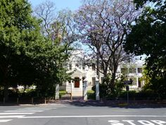 Selbst im Dezember blühen noch die Jakaranda-Bäume Safari, Mansions, House Styles, Home Decor, Cape Town, December, Travel Advice, Decoration Home, Manor Houses