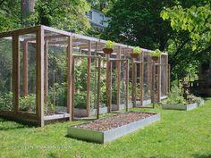 Edible Gardening Squirrel-proof wood structure for suburban gardening Raised Vegetable Gardens, Veg Garden, Vegetable Garden Design, Garden Fencing, Garden Beds, Garden Gate, Vegetable Gardening, Farm Gardens, Outdoor Gardens
