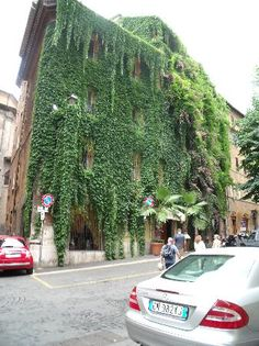 Ivy Covered Hotel in Rome, Italy!