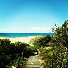 Zennith Beach, Port Stephens, Australia